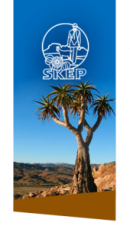 SKEP Quiver Tree