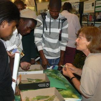 Kirstenbosch Biodiversity Expo allows learners to engage with various biodiversity careers