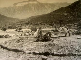 Worcester (date unknown) - these beds are now part of the Richtersveld section