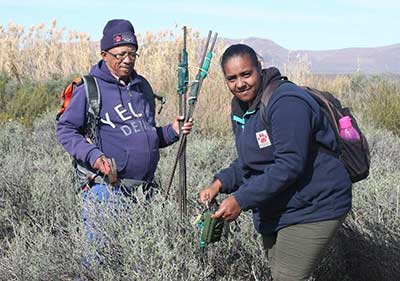 Groen Sebenza Pioneer Janice Essex and Johnny Arends during camera trap removal on Dunedin Farm.