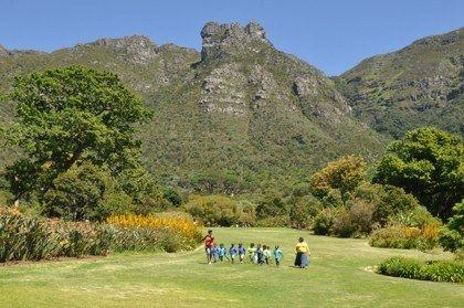 Kirstenbosch main lawn in early summer