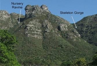 Kirstenbosch Nbg Smuts Track Up Skeleton Gorge Sanbi