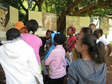 Biodiversity Week lessons in the Pretoria NBG
