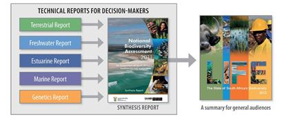 National Biodiversity Assessment products