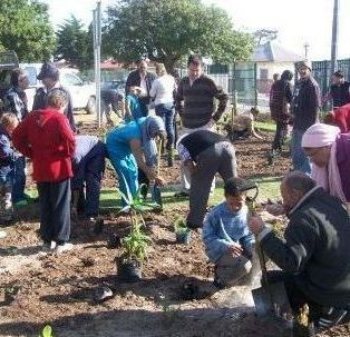Ruyterwacht Community Learning Centre planting their indigenous garden.