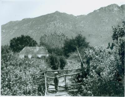 Cottage which became curator's house. Arthur Elliott before 1913
