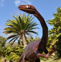 DinoExpo Aardonyx
