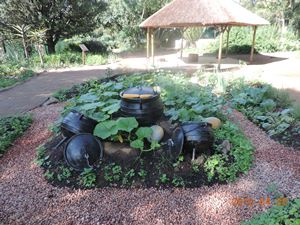 Zulu demonstration garden
