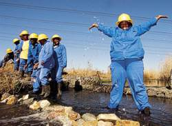 Freshwater Programme workers