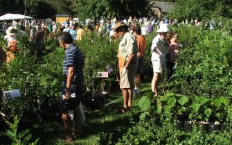 Kirstenbosch Garden Fair and Plant Sale
