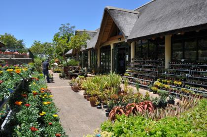 Garden Centre and Nursery at Kirstenbosch
