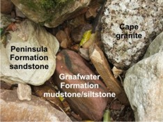rock types found at Kirstenbosch