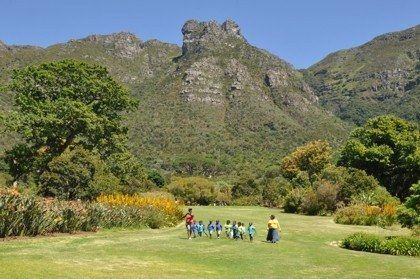 Kirstenbosch Nbg The Most Beautiful Garden In Africa