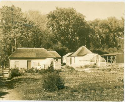 New Nursery buildings at Kirstenbosch 1927