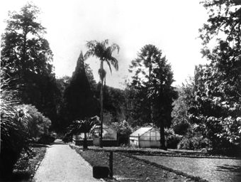 KZN Garden history