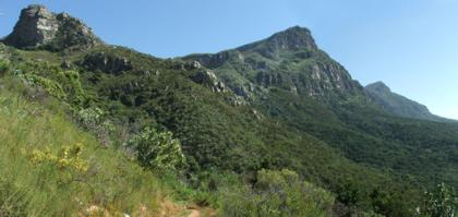 The Kirstenbosch natural area