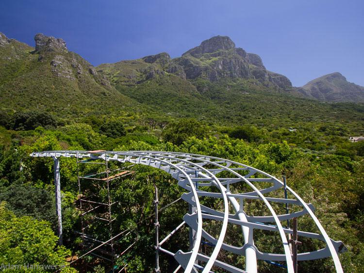 Kirstenbosch Tree Canopy Walkway Construction Sanbi