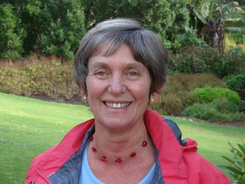 Wednesday Talk with Sue Buchanan