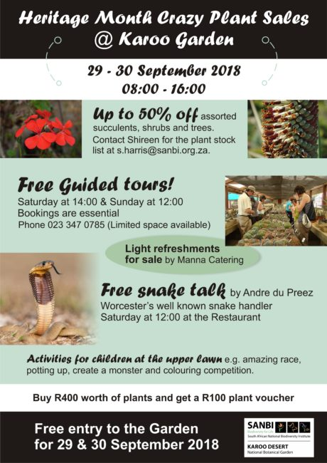 Heritage Month Crazy Plant Sales