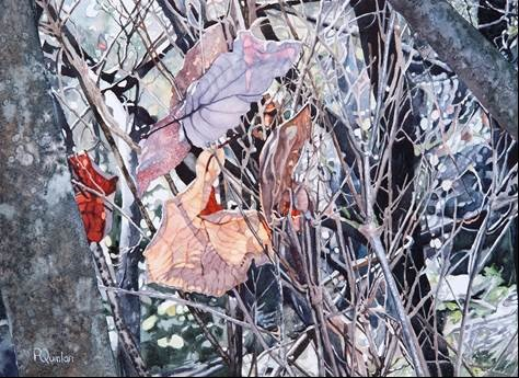 South African Society of Artists (SASA) Exhibition at Kirstenbosch