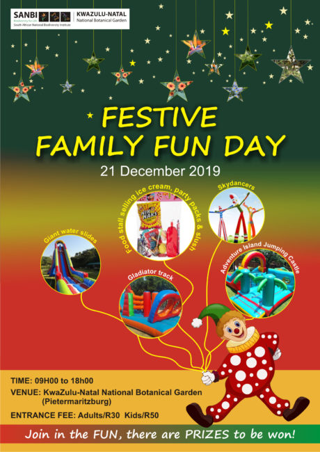 Festive Family Fun Day