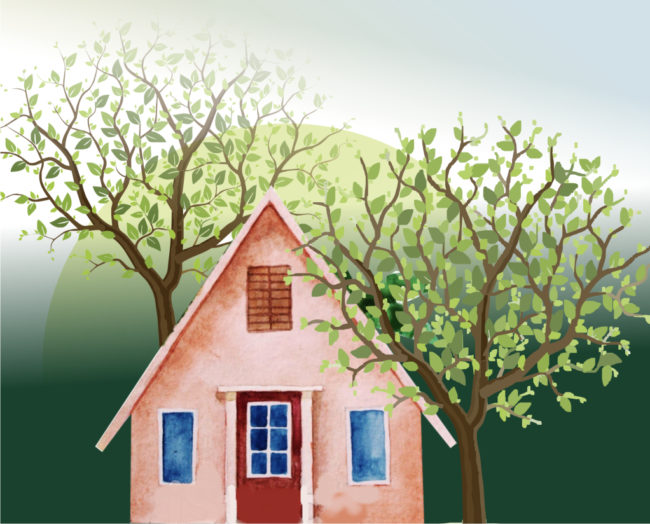 Suitable trees for smaller gardens: An illustrated talk by Prof Braam van Wyk