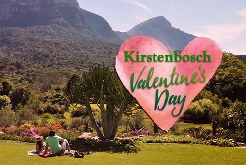 kirstenbosch valentine